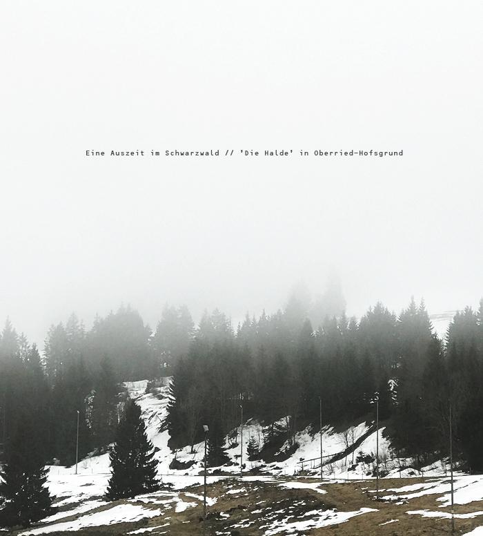 Eine Auszeit Im Schwarzwald Wellnesstag Die Halde Oberried